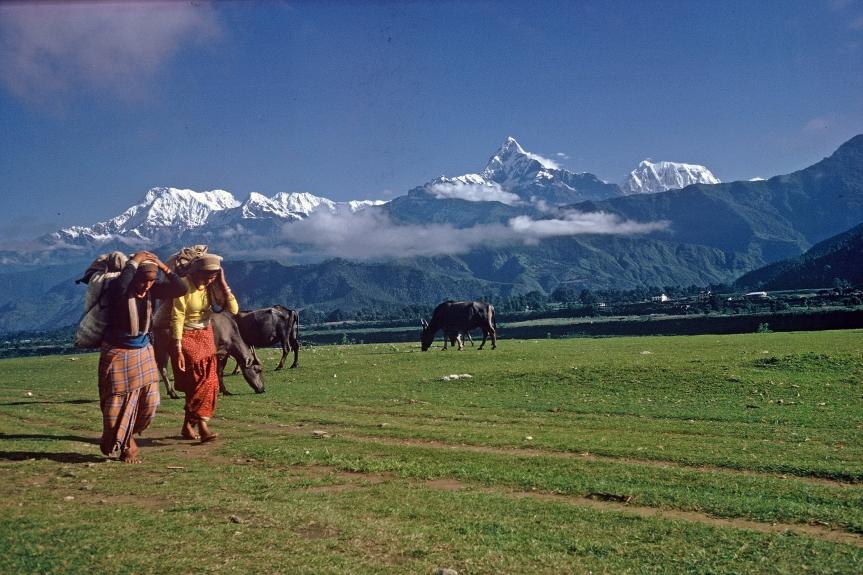 Vägen till Indien. Första resan1969
