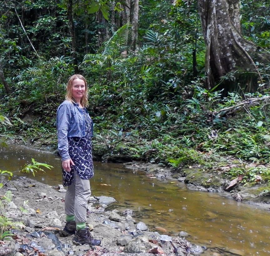 Vilse i regnskogen