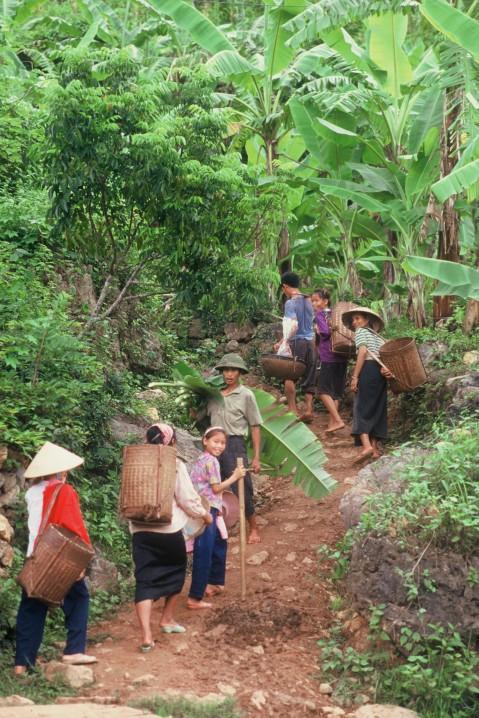 Vietnam 130
